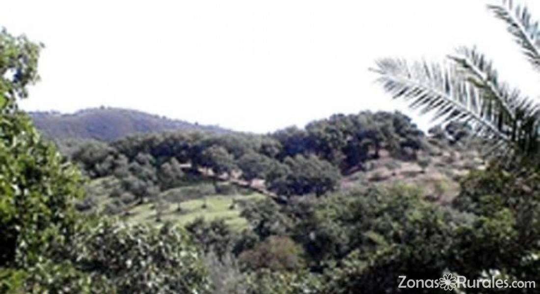 Casas rurales con jacuzzi en huelva - Casa rural con jacuzzi aragon ...