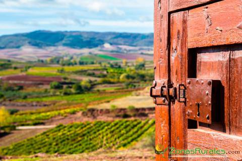 Vistas a los viñedos