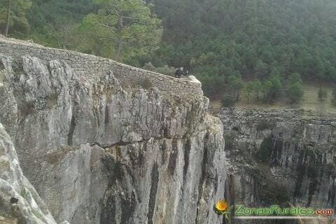 Cazorla: Viaje al centro de la naturaleza