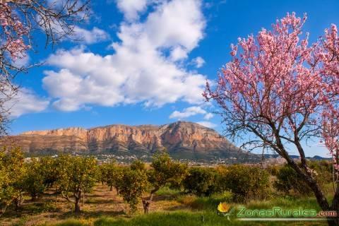 Vistas del Parque Natural del Montgó