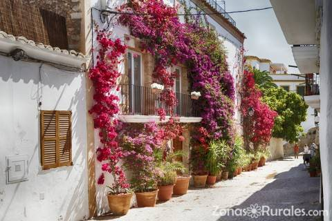 ¿Te vienes a disfrutar de Ibiza?