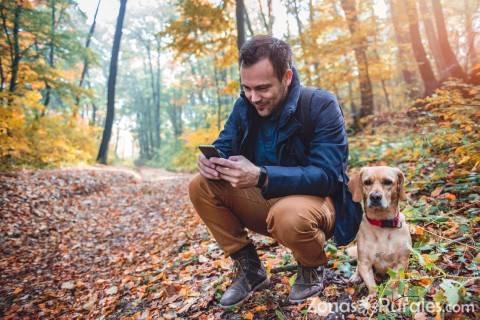 Las mascotas también se merecen viajar: su inclusión en el turismo rural