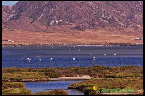 Parque Natural del Cabo de Gata, Níjar