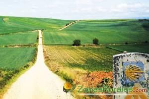 Un viaje rural por el misterio del Camino de Santiago