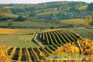 La ruta del Rioja: turismo rural, naturaleza, historia y vino