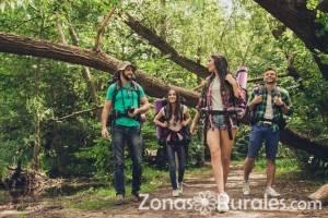 Turismo en el Bosques