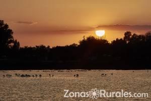 Parque Nacional de Doñana, turismo rural en el corazón de Andalucía