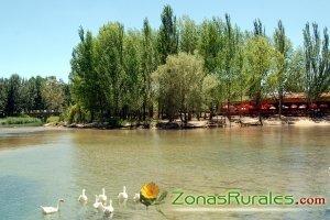 Zona de La Pradera en El Picazo