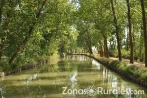 Descubre los encantos naturales de Valladolid