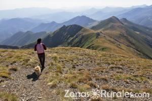 Los beneficios del turismo rural para las mascotas