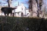 Comentario de Casa Rural La Ermita: SEMANA SANTA