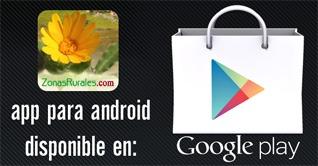 App Casas Rurales